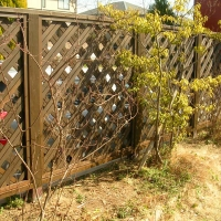 fence1_or